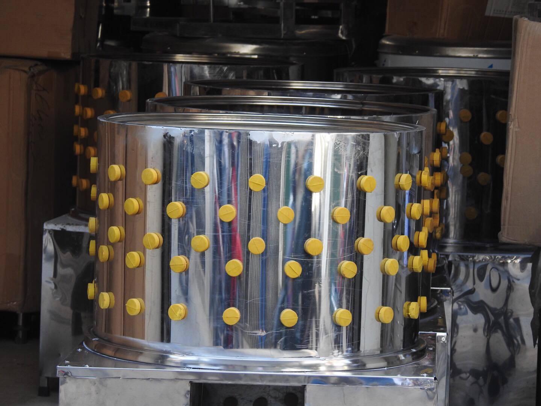 Máy vặt lông gà chính hãng tại Quang Huy cung cấp.